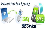 Internet SMS Marketing in Delhi